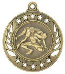 Wrestling Galaxy Medal Galaxy Medal Awards