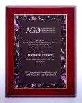 Airflyte Recognition Plaques